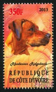 Briefmarke mit Rhodesian Ridgeback