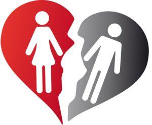 Rhodesian Ridgeback gerät in Not durch Scheidung