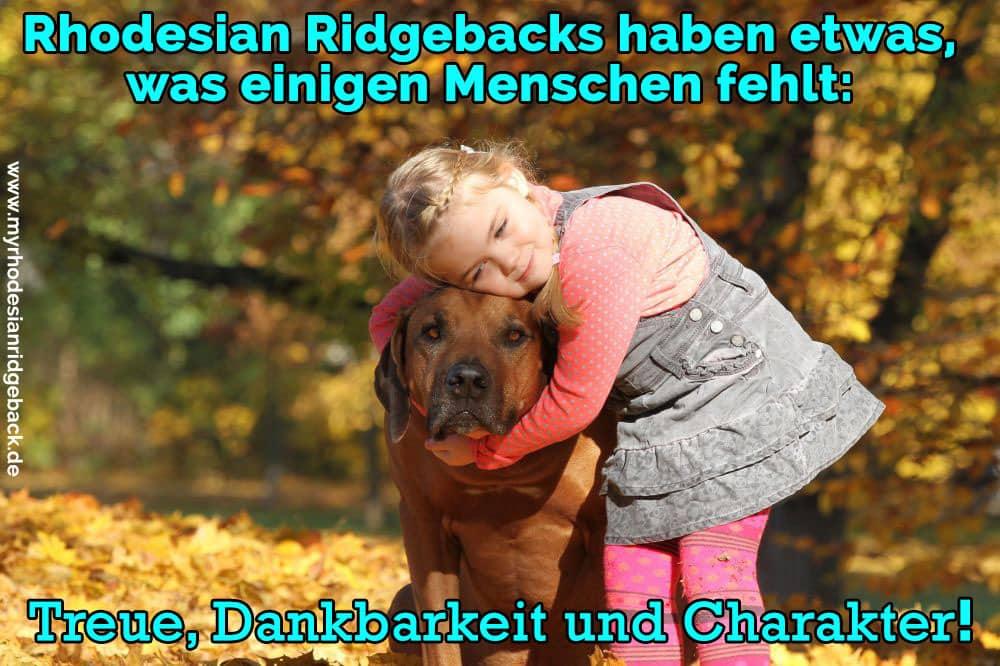 Ein Mädchen umarmt ihren Rhodesian Ridgeback