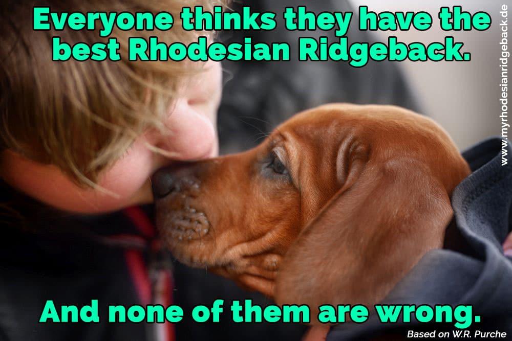 Ein Mädchen küsst ihren Rhodesian Ridgeback