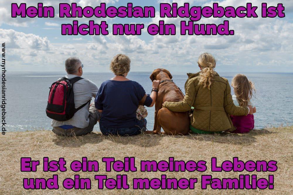 Eine Familie auf dem Stein mit Ihrem Rhodesian Ridgeback sitzt