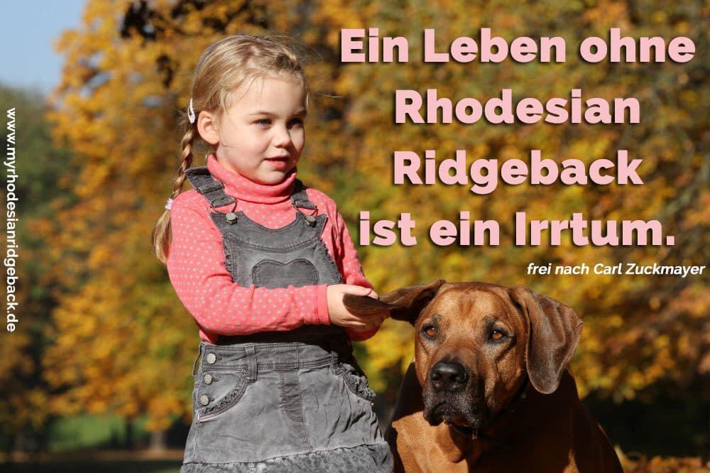 Ein Mädchen streichelt ihre Rhodesian Ridgeback