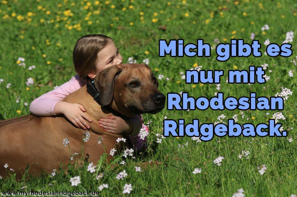 Ein Mädchen, das ihren Rhodesian Ridge im Garten umarmen