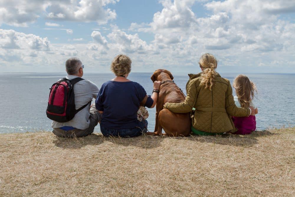Rhodesian Ridgeback mit Familie